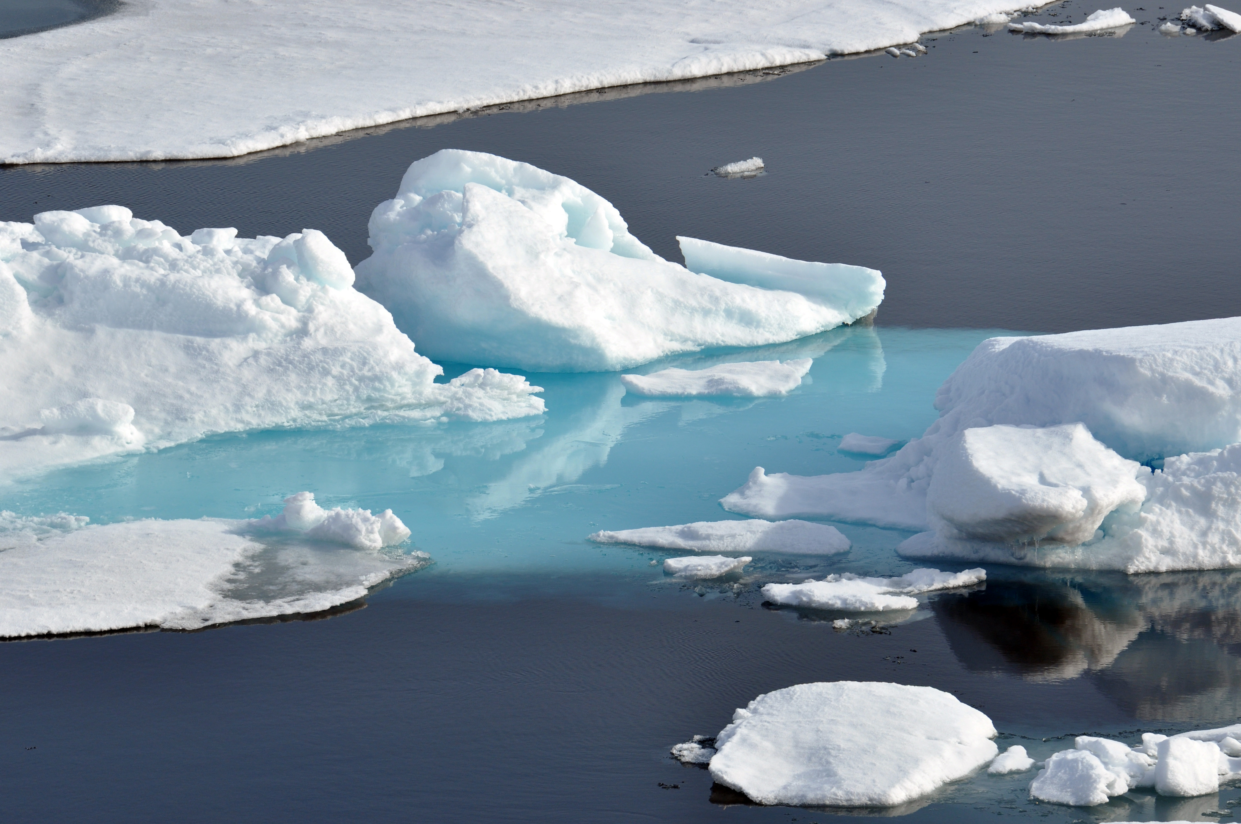 Dialogue and Commission on Arctic Climate Change