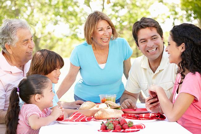 Family Economic Success Framework.