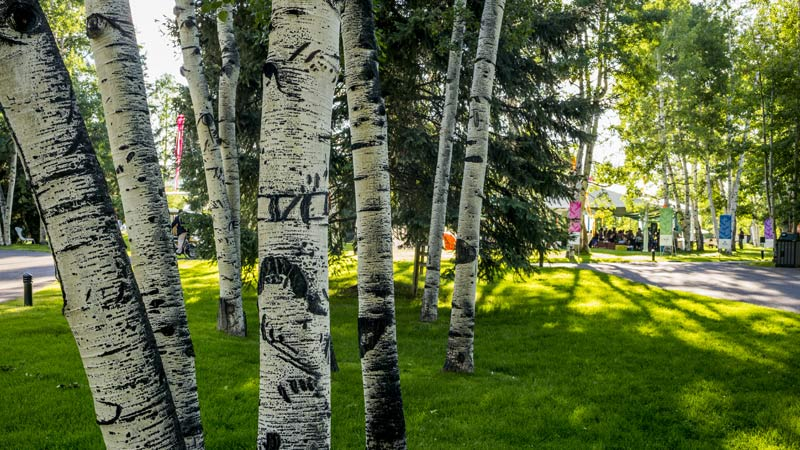 Aspen Institute Seeks New President and CEO
