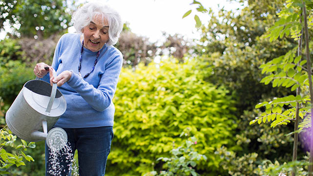 Senior Woman Watering Flowers In Garden