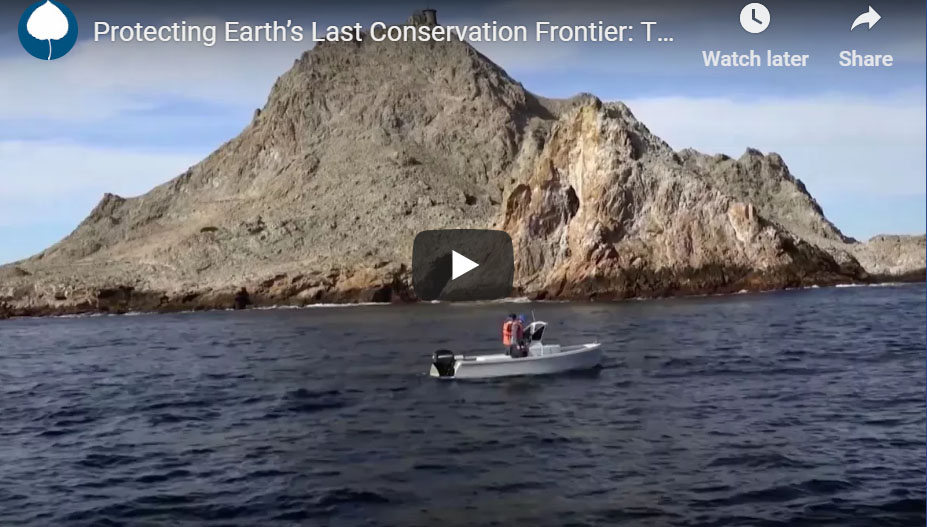 Protecting Earth's Last Conservation Frontier: The High Seas