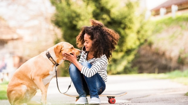 What We Can Learn from Dogs