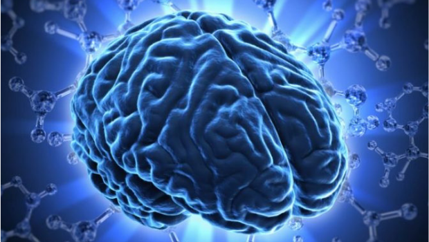 SOF Forum: Breakthroughs in Brain Health, Immunity, and Wellness