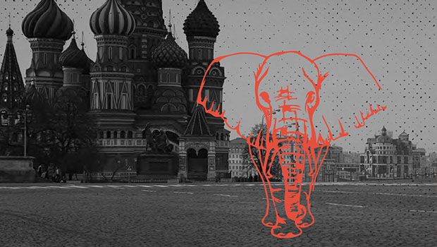 When You're the Elephant: A Leadership Lesson in Fearlessness