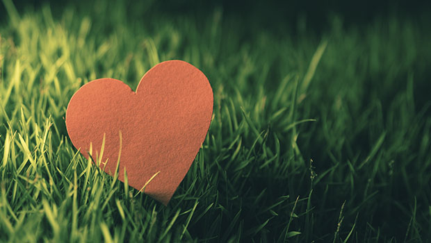 Gifts for the Planet on Valentine's Day