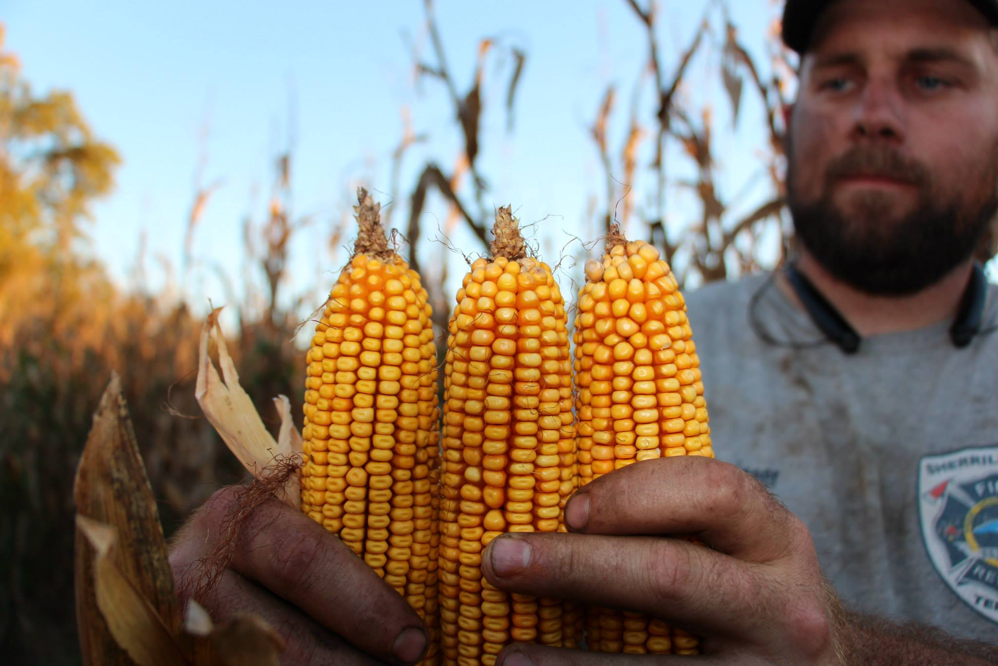 US Food Security in Challenging Times