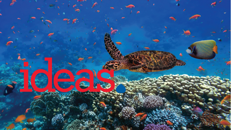 Biodiversity at Sea