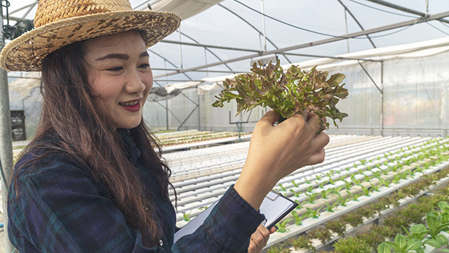 Woman holding hydroponic plant