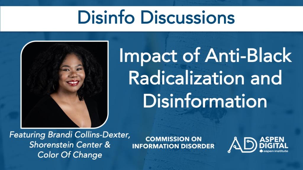Impact of Anti-Black Radicalization and Disinformation