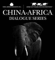 China-Africa Dialogue Series
