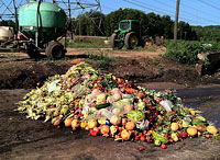 Preventing Food Waste Helps Food Security